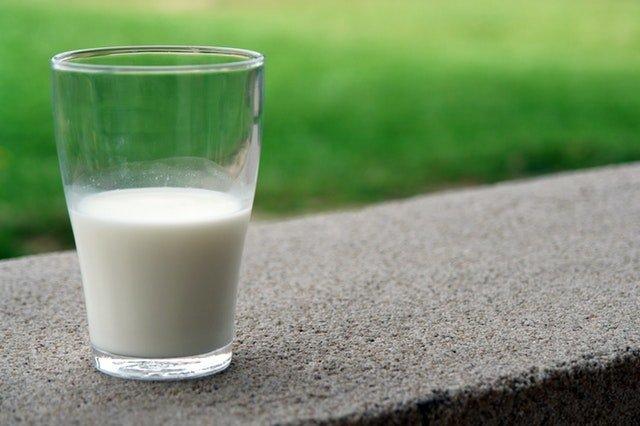 producción de leche en lactancia